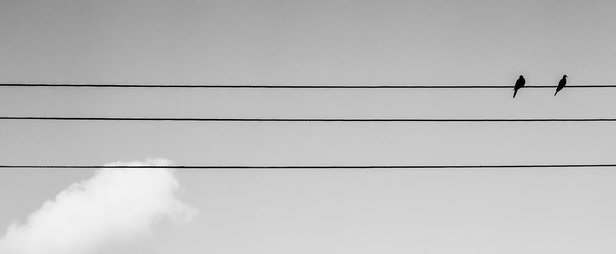 Einzel-/Paarsitzungen